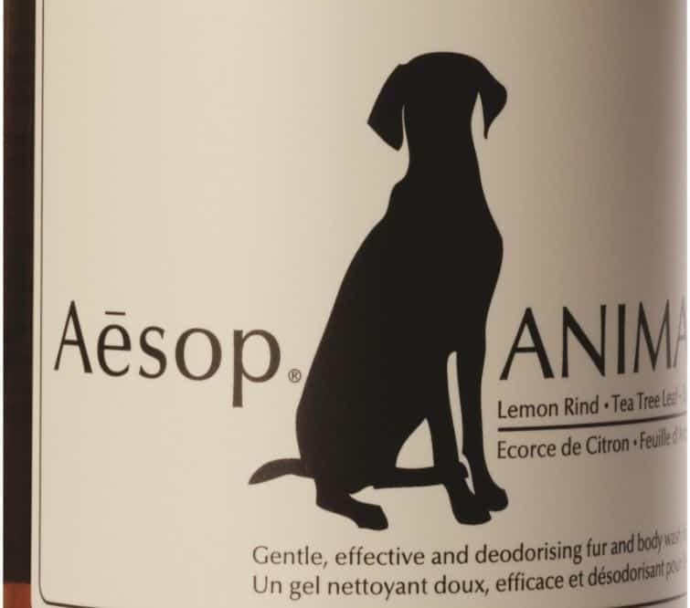 Con Aesop Animal Shampoo il tuo cane è pulito e profumato!