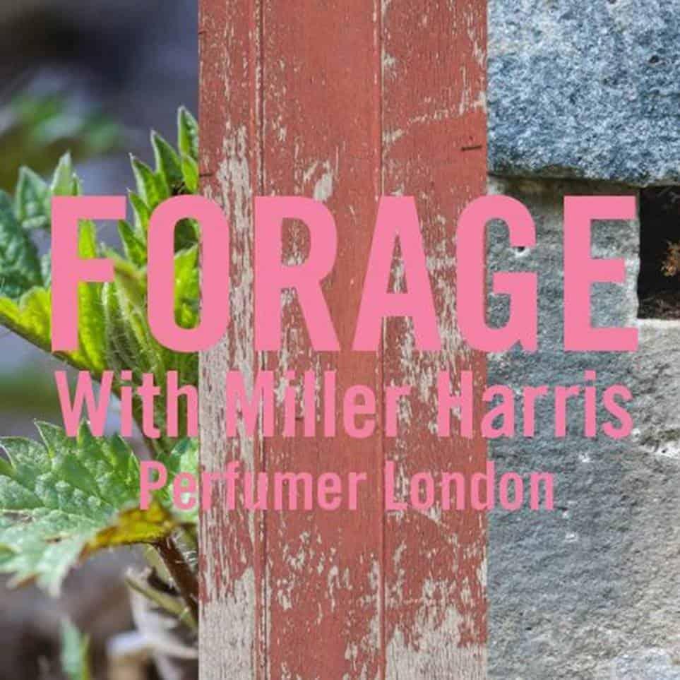 Tre nuove fragranze Miller Harris ispirate al foraging